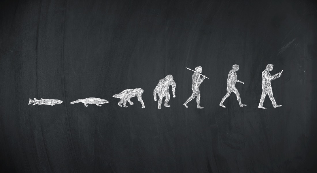 A photo of evolution from animal to man