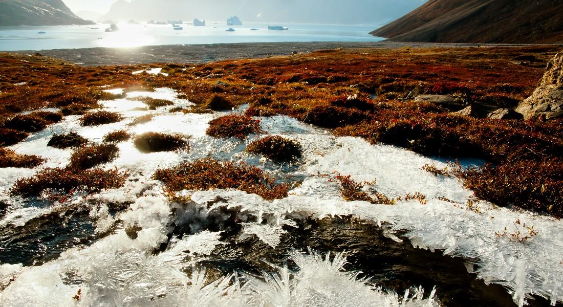 Permafrost in arctic