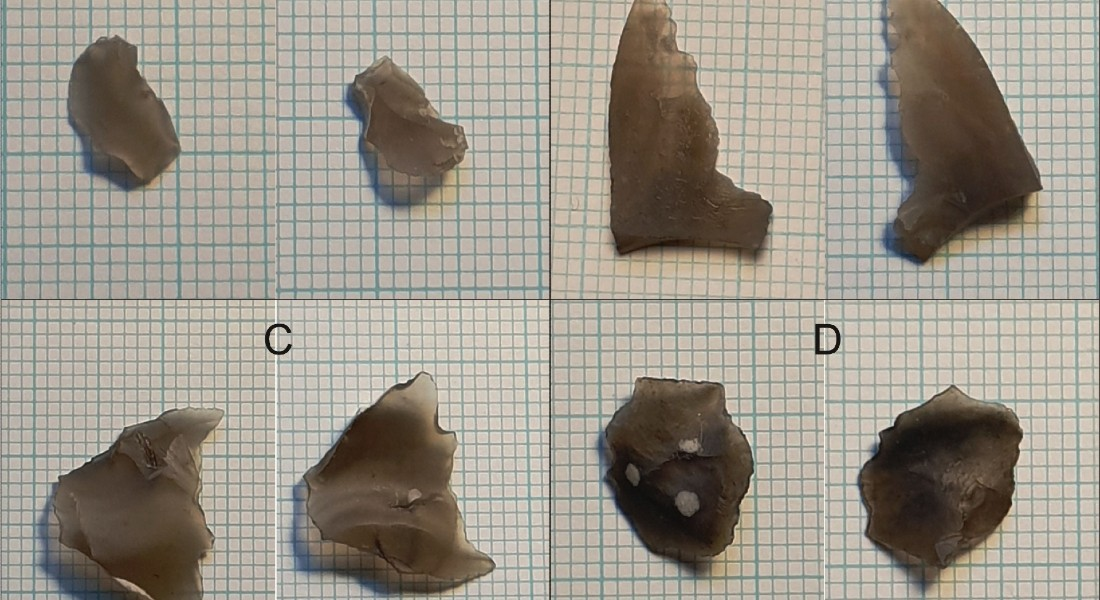 Here are the four pieces of flint, seen from both sides, that the researchers have found beneath the seabed in the habour. Photo: Ole Grøn