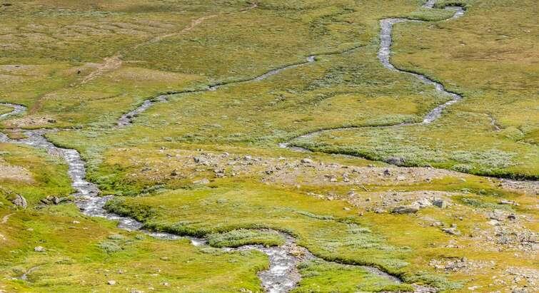 Arctic stream