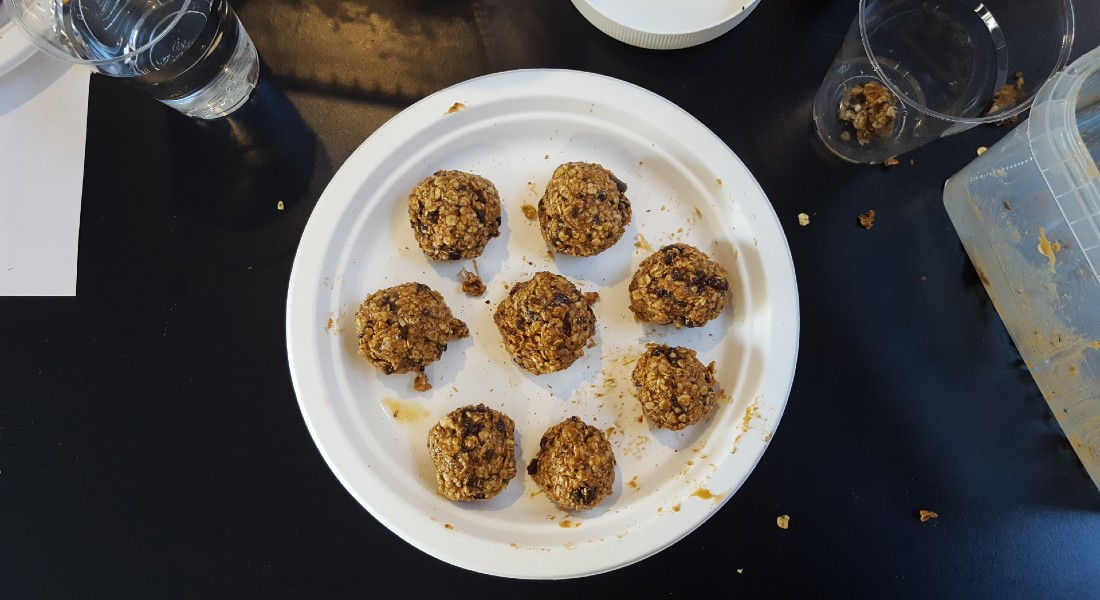 8 rolled oatmeal balls made with mealworms or grasshoppers